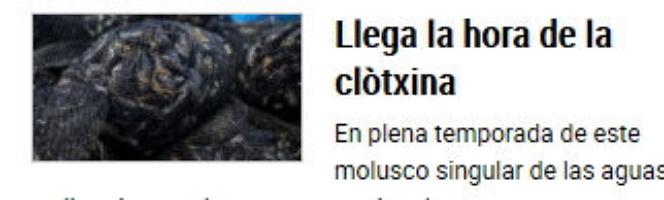 """La catalanada del día del catalán Levante: """"clòtxina'"""